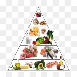 planes gratuitos de comidas bajas en carbohidratos