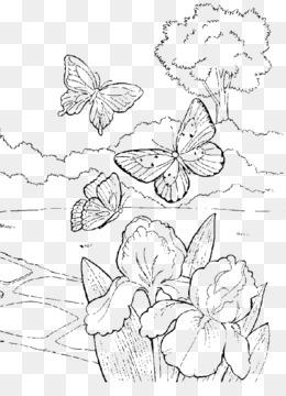 Libro Para Colorear De Dibujo De Kindergarten De La Escuela